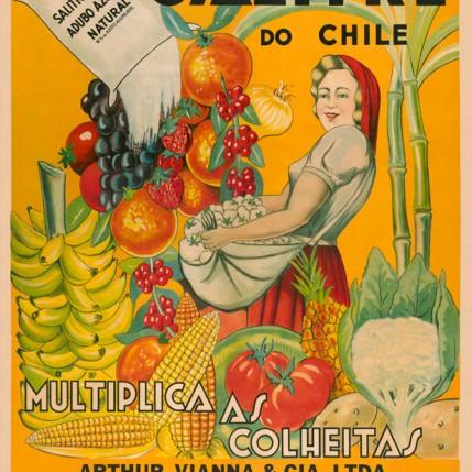 Afiche Brasil