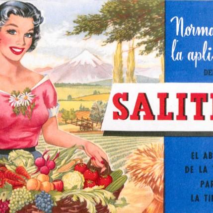 Afiche Chile