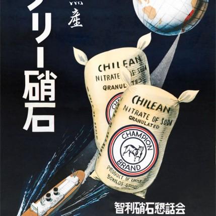 Afiche Japón